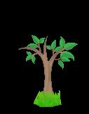 kasvavat-puut-2